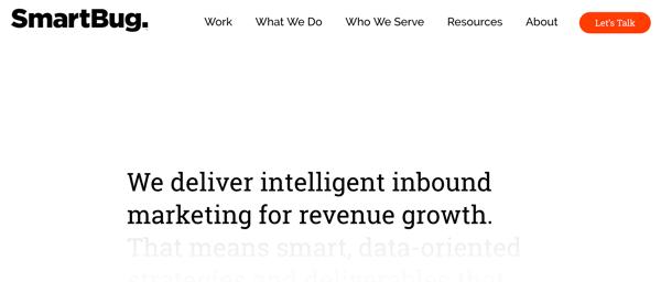 best web design firm SmartBug